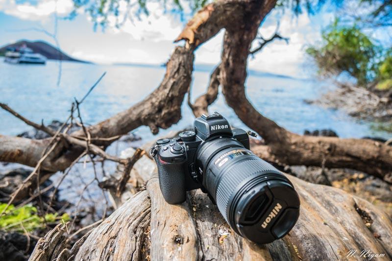 The Nikon Z50 Underwater