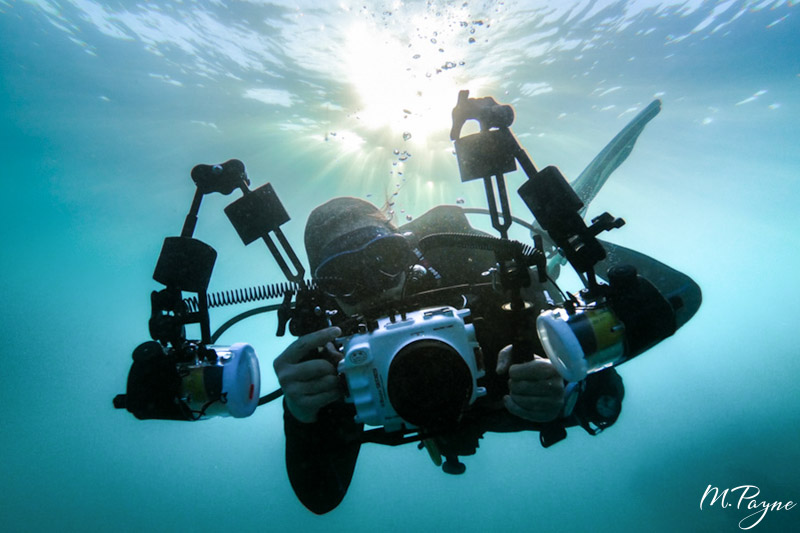 Underwater Photography Guide contributor Jenna Szerlag with Salted Line Housing, macro port and dual Sea&Sea YSD2j strobes.
