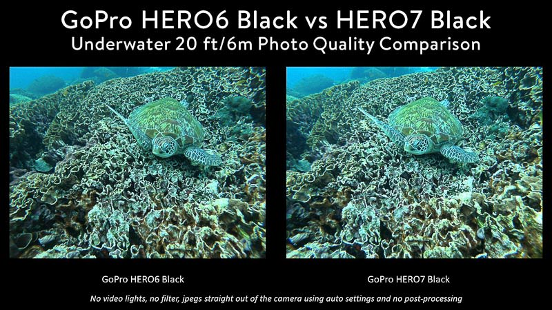 GoPro 6 vs GoPro 7 Underwater Photo Comparison Turtle on coral