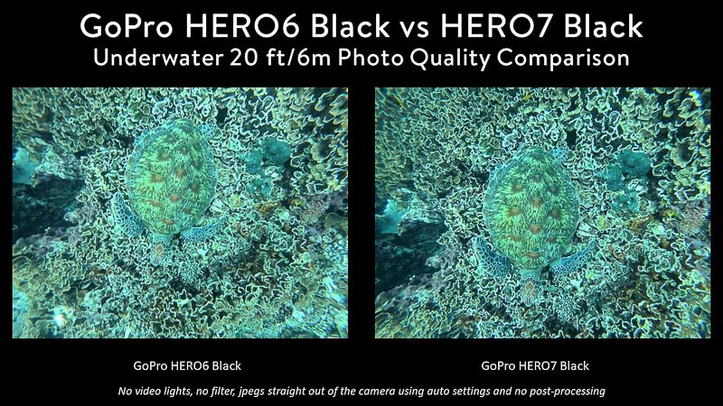 GoPro 6 vs GoPro 7 Underwater Photo Comparison of a sea turtle on coral, taken from above
