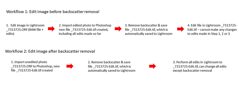 The two Photoshop/Lightroom backscatter removal workflows