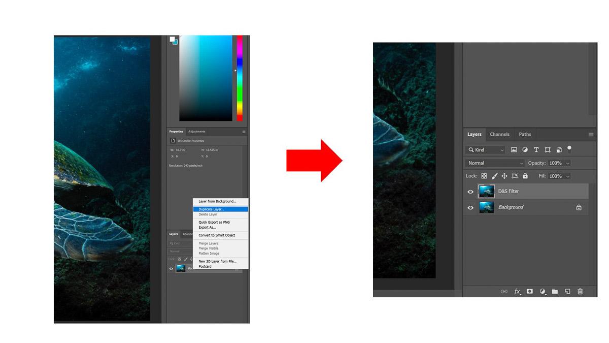 Screenshot showing how to duplicate layer