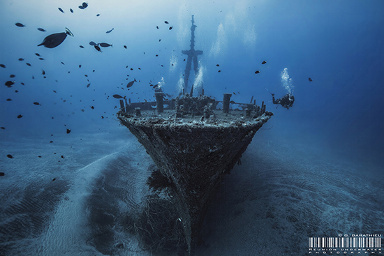Diving Reunion Island|Underwater Photography Guide