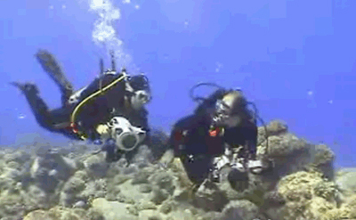 dive buddies video