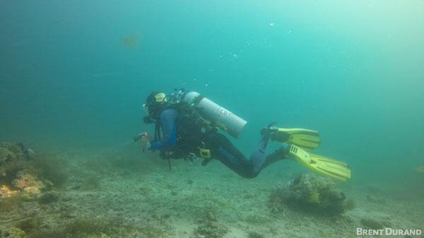 GoPro underwater magenta filter