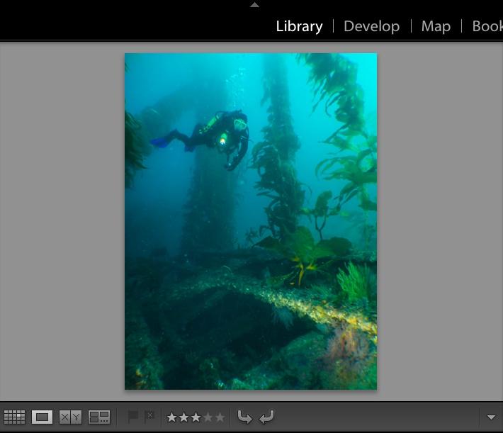 Workflow Basics in Adobe Lightroom for underwater