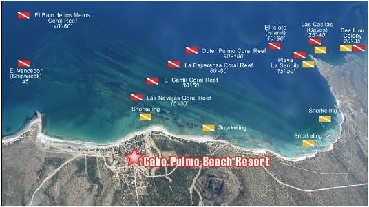 cozumel dive sites
