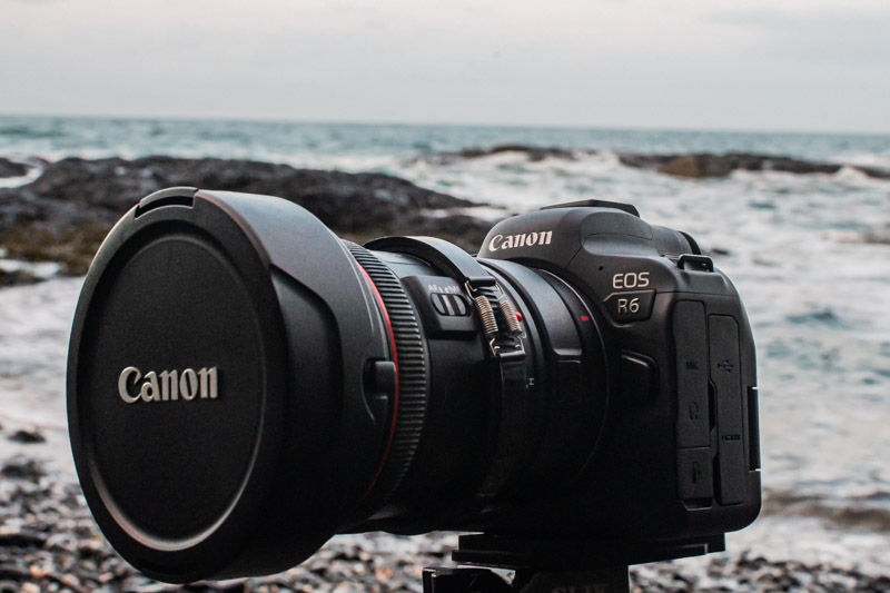 Canon EOS R6 underwater review