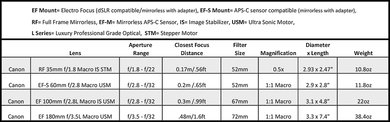 Canon macro lens options for underwater photography