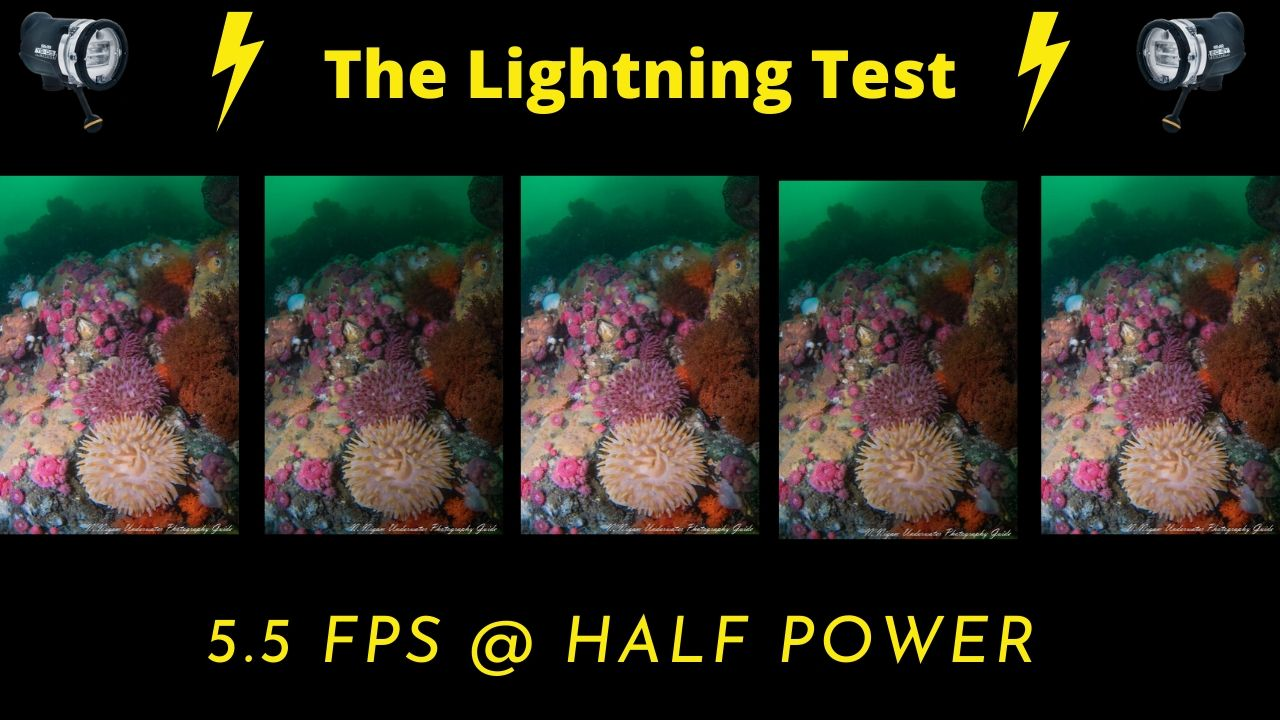 Sea & Sea YS-D3 lightning test