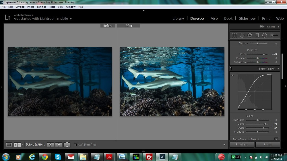 Lightroom for the Rest of Us - Underwater Photography Guide