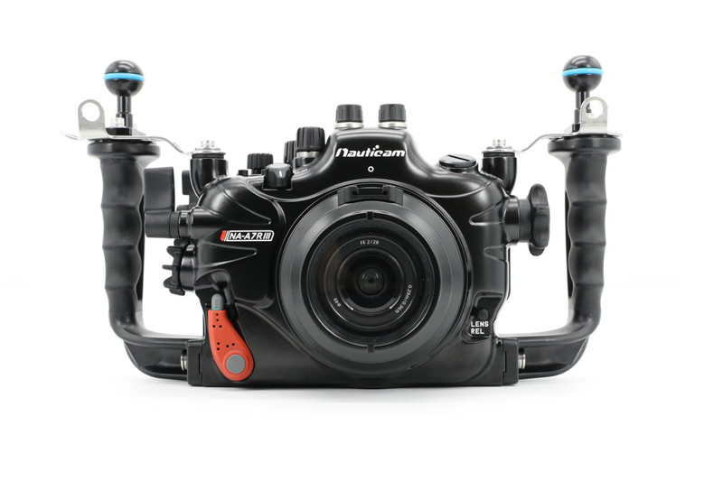 Nauticam Sony A7R III Housing Mini Review - Underwater