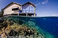 Ambient Light Underwater Photo Tips