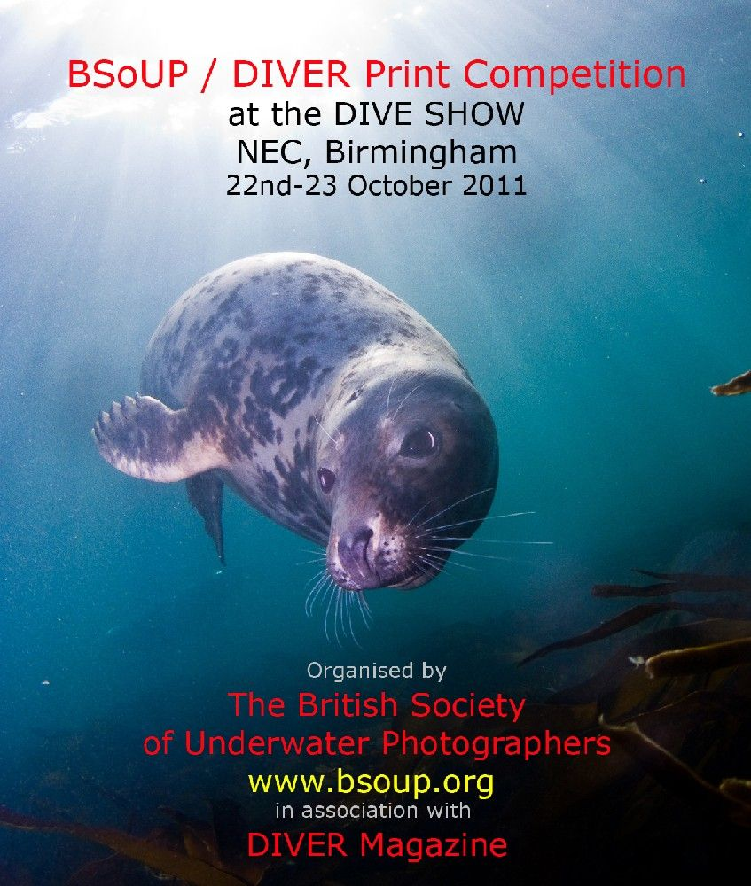 BSoUP/ DIVER Annual Print Competition