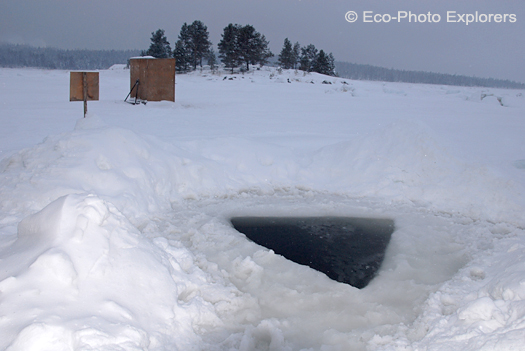 Maina ice hole
