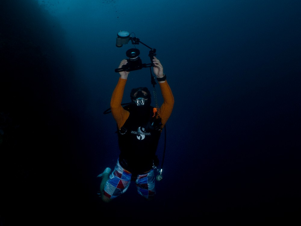 Underwater Photography: Five Tips for Beginners - The Wandering Canon underwater photography guide