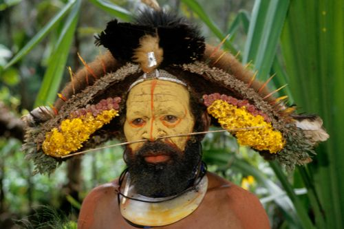 elder huli man, papua new guinea