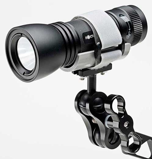 nocturnal dive light with ultralight focus light mount