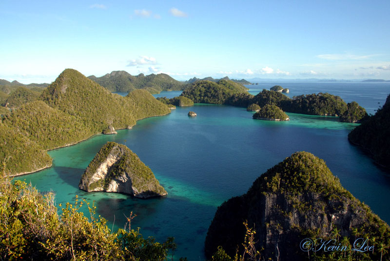 Raja Ampat diving underwater