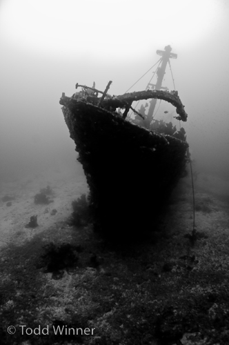 ambient light shipwreck underwater photography