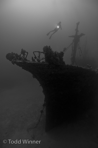 shipwreck in the solomon islands