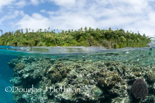 island view of tonga