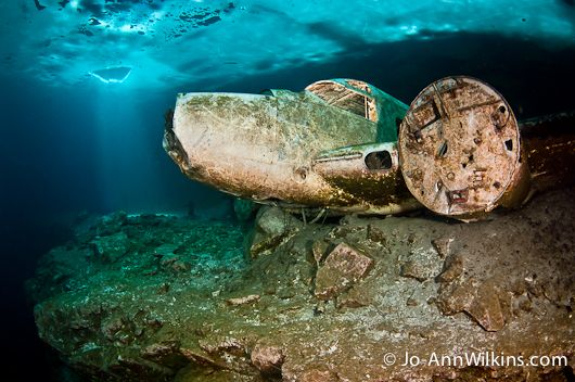 Diving Under the Ice - Underwater Photography Guide