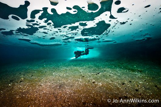 Diving Under The Ice Underwater Photography Guide