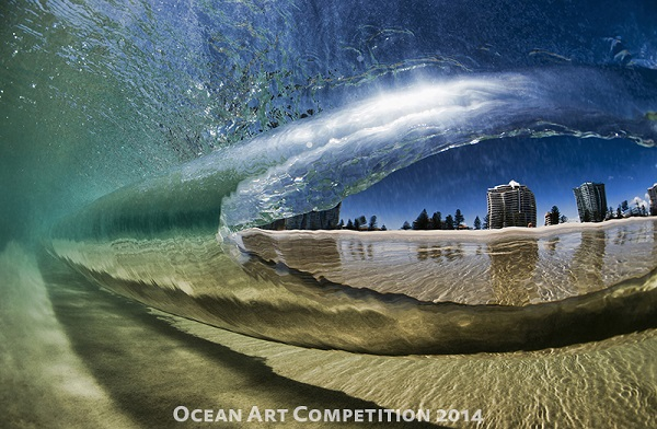 ocean art photo competition best of show