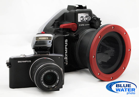 Olympus E-PM1 camera housing bundle on sale, best deal ever on ...