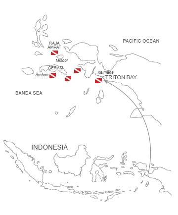 raja ampat and triton bay map