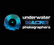 Underwater Macro Photographers