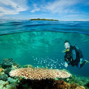 diving vietnam