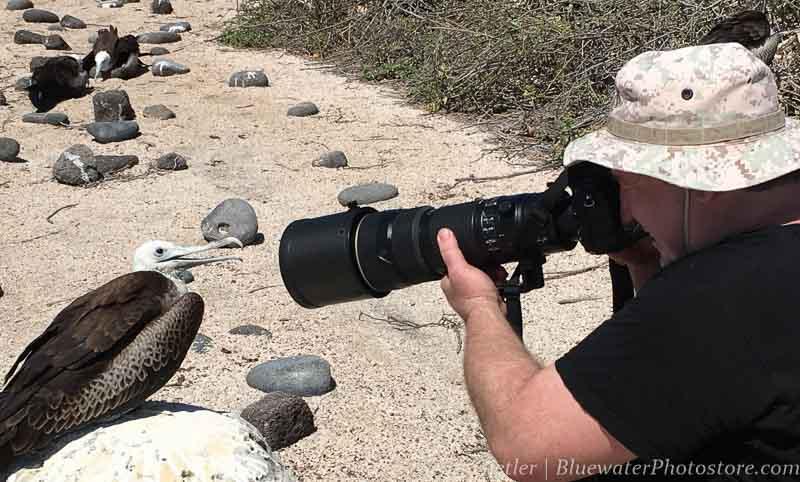Galapagos lens choice