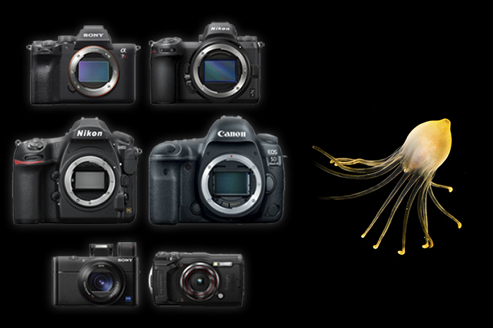 top ten underwater cameras
