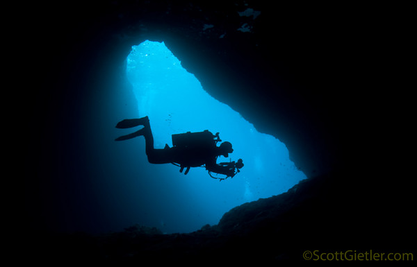 underwater photography silhouettes underwater photography guide