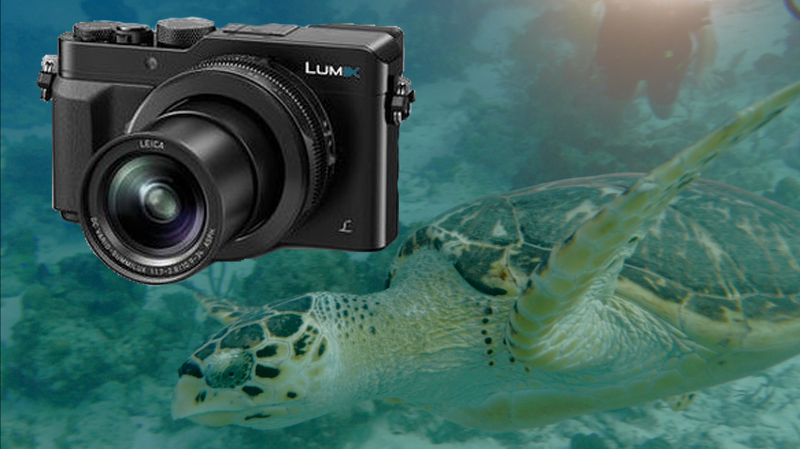 Panasonic LX100 Settings for Underwater Video - Underwater