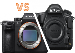 The Nikon D850 vs the Sony A7R III for Underwater