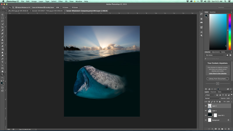 Enhancing your Images with Photoshop - Underwater